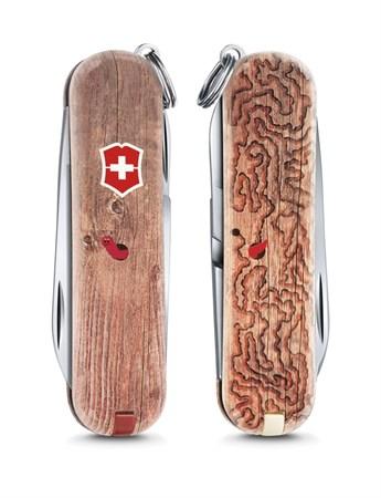 Нож брелок Victorinox Woodworm 0.6223.L1706 - фото 7071