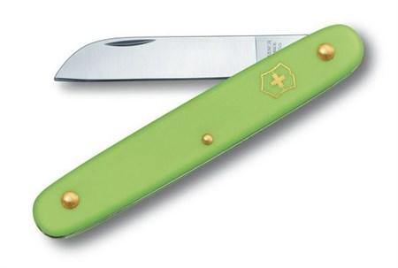 Нож перочинный Victorinox EcoLine Floral (3.9050.47B1) 100мм 1функций салатовый блистер - фото 9436